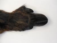 Wildschweinschwarte Sauschwarte