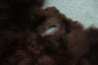Bisonmaske Bullenkopf (1)