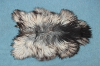 Heidschnucke Schwarz Grau Weiß (2)
