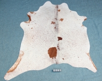 Kuhfell Braun Weiß gespränkelt (2391)