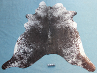 Kuhfell Schwarz Braun Weiß Gesprenkelt (2461)