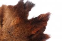 Bisonfell Extravagantes Fell aus eigener Herstellung